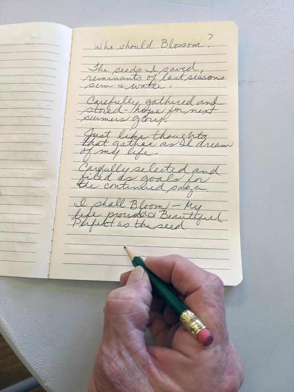 SASA Writing 20 w2