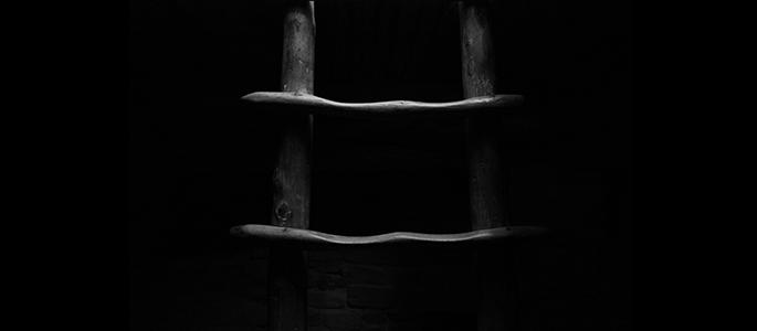 case emily ladder