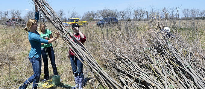 Hastings College graduate Teal Peterson helped gather sticks to construct art.
