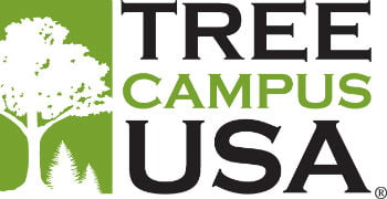 treecampus usa 0